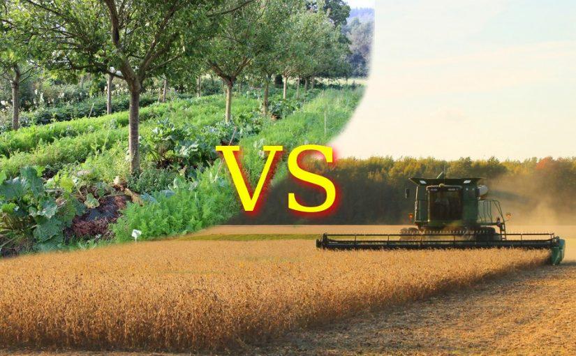 Permaculture vs agriculture industrielle: le sens des priorités